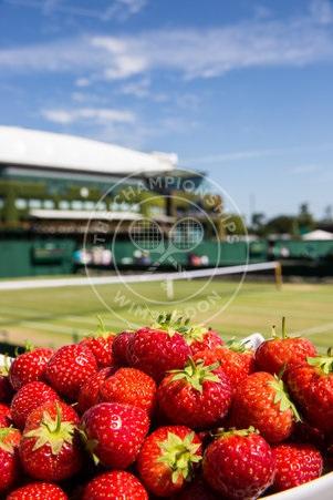 Wimbledon AELTC strawbs