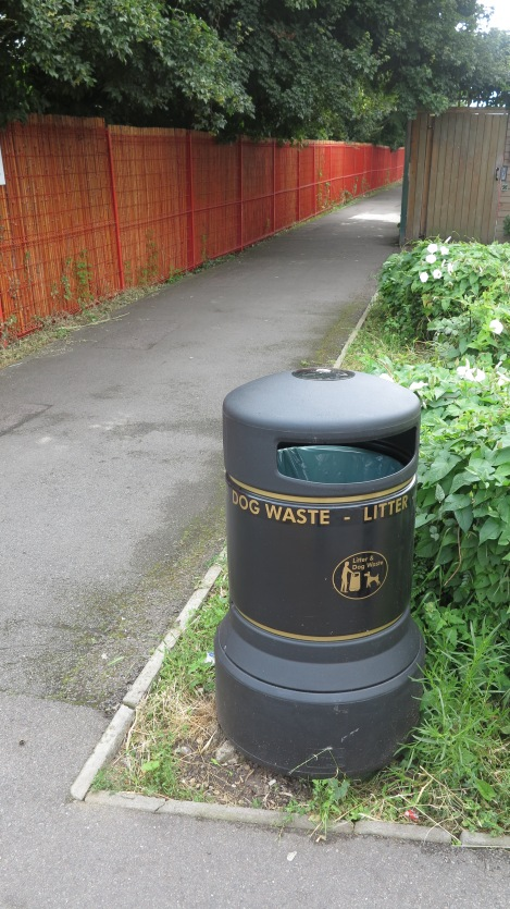 Lonesome Primary bin 2.JPG